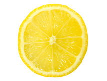 Zitrone-Scheibe Stockbild
