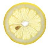 Zitrone-Scheibe Stockfoto