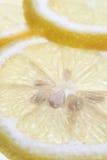 Zitrone-Scheiben Stockfotos