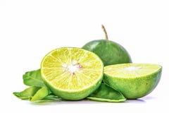 Zitrone, Schnitt zur Hälfte und Blätter auf einem weißen Hintergrund Lizenzfreie Stockfotografie