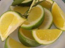 Zitrone, sitroner stockfoto