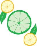Zitrone u. Kalk stockfoto