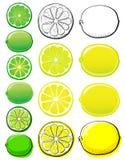 Zitrone u. Kalk Stockfotografie