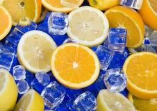 Zitrone u. Orange Stockbild