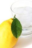 Zitrone- und Eiswasser Stockfoto