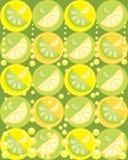Zitrone und Kalk lizenzfreie abbildung