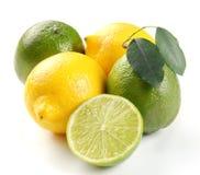 Zitrone und Kalk mit Blättern lizenzfreie stockfotos