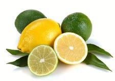 Zitrone und Kalk mit Blättern Stockfotografie
