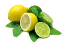 Zitrone und Kalke Stockbild