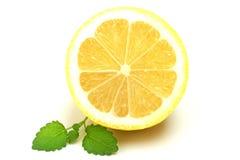 Zitrone und Melisse stockfotos