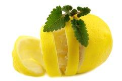 Zitrone und Melisse lizenzfreies stockbild