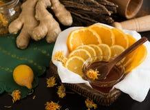 Zitrone und Orange um Schüssel mit Honig Lizenzfreie Stockfotos