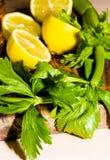 Zitrone und Sellerie Stockfotografie