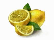 Zitrone - Zitronen mit Blättern Stockbilder