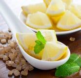 Zitrone, Zucker und Minze Lizenzfreies Stockbild