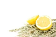 Zitronehälften auf Hafer Stockfotos