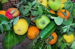 Zitronen, Äpfel, Orangen Stockfoto