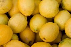 Zitronen Lizenzfreie Stockbilder