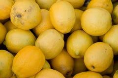 Zitronen Lizenzfreies Stockfoto