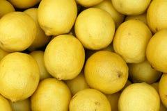 Zitronen stockbild