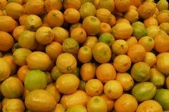 Zitronen Stockbilder