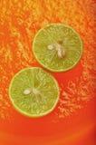 Zitronen auf orange Gelee 1 Stockbilder