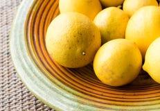 Zitronen auf Platte (nahe hohe) Lizenzfreies Stockbild