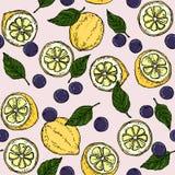 Zitronen-Blaubeer-und Basil Leaf Surface Pattern Fruity-Hintergrund-Illustrations-Vektor Stockfotografie