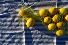 Zitronen in der gelben Nettotasche Stockfotografie