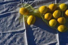 Zitronen in der gelben Nettotasche Stockbilder