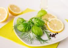 Zitronen-Dill Basil Dressing Stockbild