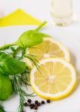 Zitronen-Dill Basil Dressing Stockbilder