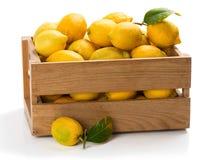Zitronen in einem Kasten Lizenzfreies Stockfoto