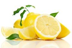 Zitronen-Früchte auf weißem Hintergrund stockfotografie