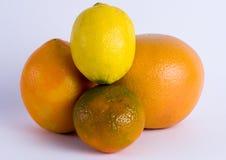 Zitronen- Früchte Lizenzfreie Stockfotografie
