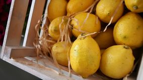 Zitronen im Korb stock video footage