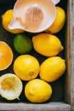 Zitronen, Kalk, orange in einer Holzkiste Stockfotos