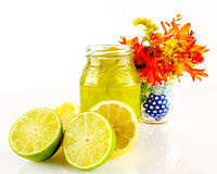Zitronen, Kalke und Marmelade Lizenzfreies Stockfoto