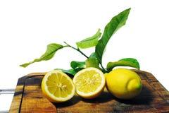 Zitronen mit Blättern Stockfoto