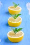 Zitronen mit Zweigen der Minze Stockbild