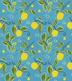 Zitronen-Muster Lizenzfreies Stockbild