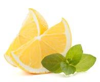 Zitronen- oder ZitronenZitrusfruchtscheibe Stockfotografie