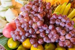 Zitronen, Orangen und Kalke Lizenzfreies Stockfoto