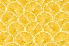 Zitronen-Scheiben-Zusammenfassungs-nahtloses Muster Lizenzfreies Stockbild