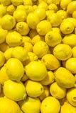 Zitronen am Supermarkt Stockfotos