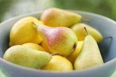 Zitronen u. Birnen Stockbild