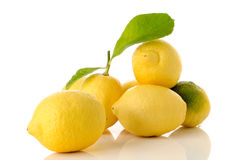 Zitronen und Blätter Stockfoto