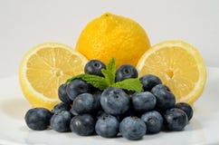 Zitronen und Blaubeeren stockfotografie