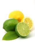 Zitronen und grüne Kalke Stockfotografie