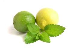 Zitronen und Kalk Lizenzfreie Stockbilder